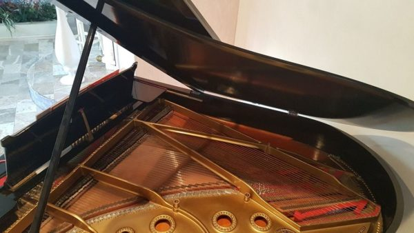 Piano Steinway & Sons