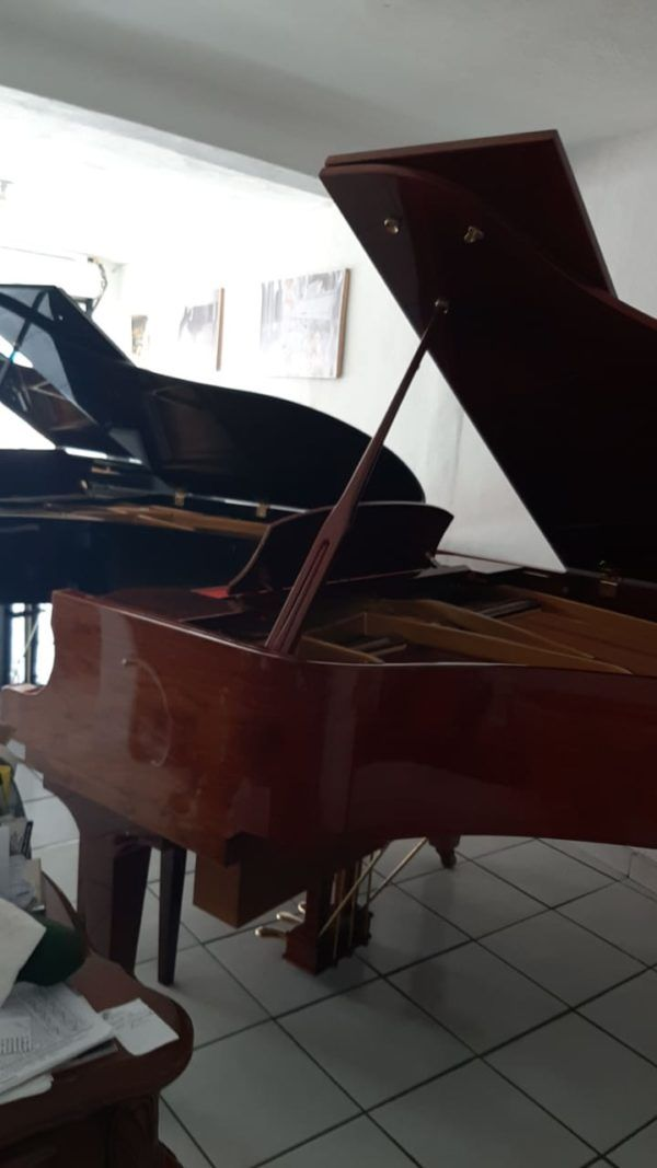 schafer & Sons piano venta mexico
